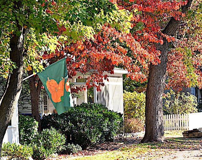 fall pic Oxford