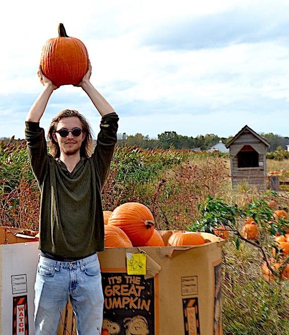staceyanson-pumpkins.jpg