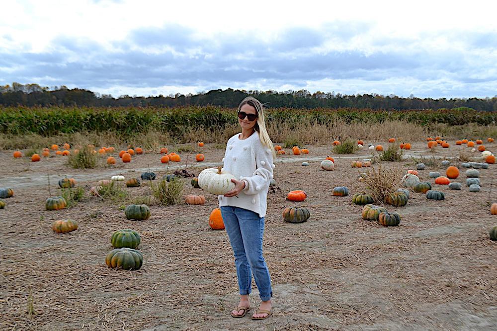 Stacy:white pumpkin